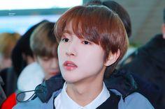 "RENDRY! on Twitter: ""190208 #RENJUN #런쥔 #黄仁俊 #NCT   💛… "" Dream Chaser, Huang Renjun, Korean Name, Nct Dream, Moomin, Profile Pictures, Kpop, Twitter, Memes"