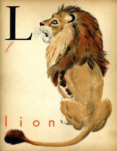 """livingnowisliving: """" Mindeemelillo saved to Vintage Illustrations and Other Mediums French alphabet print L lion """" Alphabet Cards, Alphabet Print, Vintage Children's Books, Vintage Art, French Alphabet, Childrens Alphabet, Postcard Paper, Vintage Flash, Illustration Art"""
