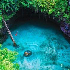 Oseriez-vous le grand saut ? :) #ilessamoa #voyageprivefrance #trip #tourisme #upgrade #travel #voyage #voyageprive #holiday #discover #seetheworld #instagram #instatravel #instavoyage #traveling #vacation #lovetravel #beautiful #sun #dream #paradise #evasion #detente #break #nature #underwater Hotels-live.com via https://www.instagram.com/p/BFyf4FRBMr5/ #Flickr