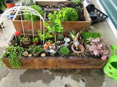 Constructing Fairy Gardens