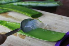 18 usos increíbles del Aloe Vera que no conocías. No comprarás productos caros de nuevo! #salud