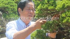 Interview with Bonsai master Masahiko Kimura - Published on Sep 17, 2016.  Masahiko Kimura is one of the world's most renowned Bonsai masters. In this unique and exclusive interview, conducted in his garden near Tokyo, we ask about his early years as apprentice, the way he educates his students and how he successfully build his business.