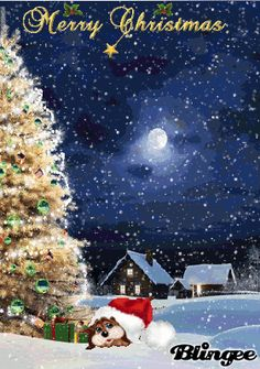cute Merry Christmas Animation, Merry Christmas Gif, Christmas Scenery, Christmas Messages, Cozy Christmas, Christmas Background, Christmas Items, Christmas Pictures, Christmas Greetings