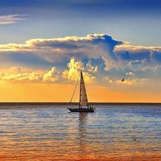 Você pede o meu coração, e eu só tenho a lamentar, sou como um barco a vela, solto à deriva em alto mar. Talvez não entenda o que...