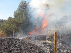 Campomaiornews: Incêndio consumiu pasto na estrada de Elvas a Camp...