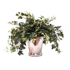 I pinned this Silk Ivy Arrangement I from the Provencal Garden event at Joss and Main!
