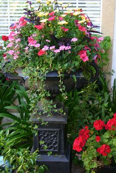 Fabulous Urn filled with brightly colored flowers...wonderful focal point