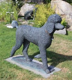 The Strolling Black Standard Poodle is created true to life size, and is cast in solid bronze. Sculpture includes a single Strolling Black Standard Poodle on a natural base. 4-6 months production time from placement of order. cliftonlyonsdesign.com