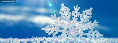 frozen facebook cover - Google Search