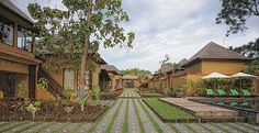 Villa Mimpi Manis in Canggu. 6 bedrooms, $350 a night and sleeps 15.