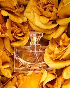 Bvlgari ~ Rose Essentielle