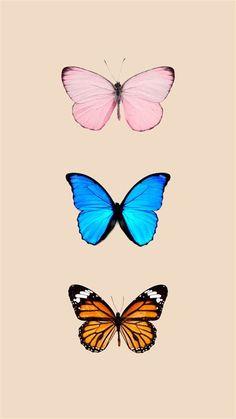 Butterfly Wallpaper Iphone, Disney Phone Wallpaper, Iphone Background Wallpaper, Wallpaper Lockscreen, Wallpaper Free, Animal Wallpaper, Pattern Wallpaper, Aesthetic Pastel Wallpaper, Aesthetic Wallpapers