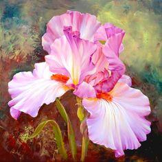 Pink Irises da Artibalta - Kit Creativi - Kit - Casa Cenina