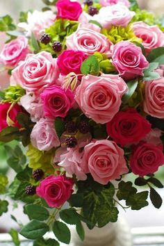 Beautiful Flowers Wallpapers, Beautiful Rose Flowers, Beautiful Flower Arrangements, Amazing Flowers, Pretty Flowers, Pink Flowers, Rose Flower Wallpaper, Happy Birthday Flower, Good Morning Flowers