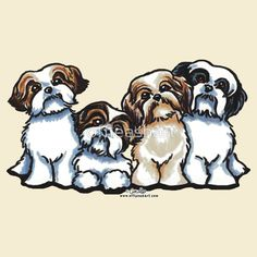 Four Shih Tzu by Andie of Off-Leash Art™