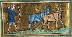 Folio 36v: The Rochester Bestiary c.1230, copy from c.1230AD, Southeastern Endland. Manuscript Royal 12 F XIII