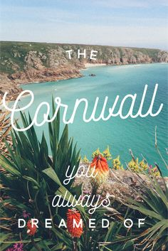 Cornwall Summer (Part St Mawes, Penzance and the Minack Theatre Cornwall England, Travel Guides, Spin, Falling In Love, Wild Flowers, Travel Inspiration, United Kingdom, Neon Signs, World