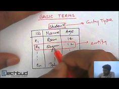 Data Model   Database Management System - YouTube Data Structures, Evolution, Management, Relationship, Models, Type, Youtube, Templates, Relationships