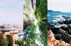 FATHOM Travel Blog and Travel Guides. Monterey and San Francisco