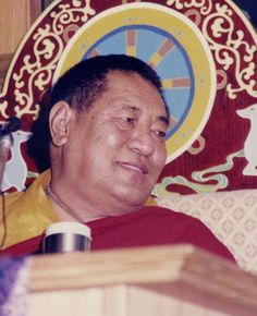 We should watch and instruct our mind with Dharma from time to time, since all kinds of emotions are surging through it - such as the desire for fame, benefits, and ease - or the dislike for being nameless, or insulted.   -- HH Jigme Phuntsok Rinpoche
