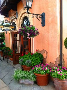 Store front / Café / Restaurant / Pub / Tavern garden and flower display and planters.  Beautiful and colorful.  Exactly what's needed to draw in customers with superb curb / store  appeal!  Photo by ParadeOfGardens.com.
