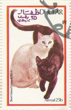 Dhufar 1974 Cat Stamps - Short Haired White & Black Cats