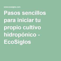Pasos sencillos para iniciar tu propio cultivo hidropónico - EcoSiglos