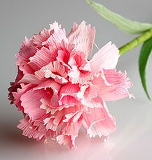 Innovative Art, Cornhusk Flower