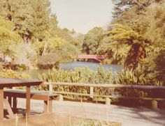 Pukekura Park in New Plymouth.