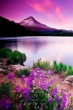 66 Best Ideas For Mountain Landscape Photography Nature Scenery Beautiful Nature Pictures, Beautiful Nature Wallpaper, Amazing Nature, Beautiful Places, Best Nature Images, Best Nature Wallpapers, Beautiful Sky, Beautiful Scenery, Beautiful Landscape Photography
