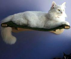 Prateleira Cama par gatos