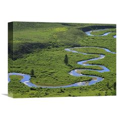 Global Gallery East River Meandering Near Crested Butte Colorado Wall Art - GCS-396312-1216-142
