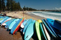 Sydney, Australia Photograph by Maurice Lee, My Shot Surfboards on Manly Beach in Sydney (This photo and caption were submitted to My Shot.) Next: World's 20 Best Surf Towns War Photography, Types Of Photography, Beach Photos, Cool Photos, Coastal Pictures, Manly Beach Sydney, Surfing Tips, Best Photographers, Barbados