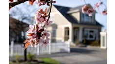 Projects to Boost Your Home's Curb Appeal - Home Improvement Tips & Advice from HomeAdvisor Vintage Porch, Home Buying Tips, Earn Money From Home, Money Fast, Spring Has Sprung, Spring Home, Types Of Houses, Home Staging, Spring Cleaning