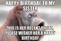 """91 Sister Birthday Memes - """"Happy birthday to my sister. This is her recent photo. Please wisher her a happy birthday. Sister Birthday Quotes Funny, Sister Meme, Happy Birthday Little Sister, Funny Happy Birthday Wishes, Birthday Memes, Birthday Greetings, Birthday Sayings, Happy Birthday Nephew Funny, Birthday Stuff"""