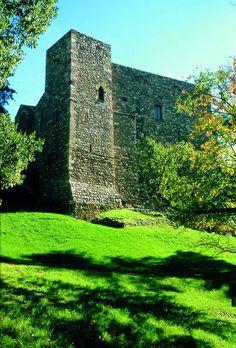 Castell Cartoixa de Vallparadís és un edifici original del segle XII es converteix en Cartoixa en els segles XIV-XV  - Terrassa  Barcelona  Catalonia