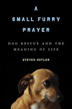 A Small Furry Prayer: dog rescue and the meaning of life by Steven Kotler