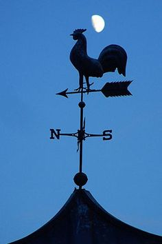 Stock Photo of  weather vane rooster compass wind direction moon