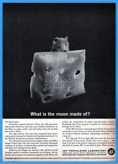 1961 CalTech JPL Jet Propulsion Lab Help Wanted Moon Swiss Cheese Mouse Photo Ad