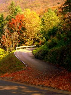 """""""Carona, (Lugano), Switzerland"""" by oriana.italy on Flickr - Autumn in Carona (Lugano), Switzerland"""