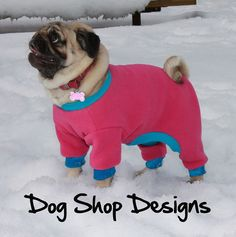 Do I really need to dress my pug up in ridiculously adorable clothes?  Yes.