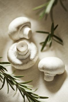 mushrooms ★