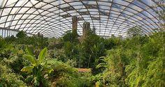 Gondwana, Leipzig, plants, animals, river, little village