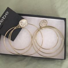 Crystal hoop earrings Pierced with crystals on the top n hoops of various graduated sizes attached bebe Jewelry Earrings