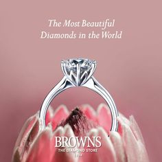 The Browns Protea Ring Inspired by one of South Africa's most unique and beautiful national treasures, the King Protea. A symbol of adaptability and transformation the Protea is the perfect way to celebrate our rich and diverse heritage.
