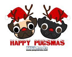 Happy Pugsmas
