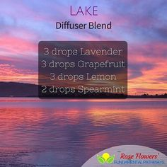 Put this in your diffuser and enjoy the minty floral citrusy aroma as it uplifts and refreshes getting you ready for a day out in the sun! #essentialoils #diffuserblend