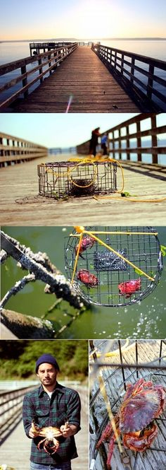 """Crabbing season    m-m-m Cioppino   it's what the Italian fishermen called it when they all threw in something for the fish and crab stew....they called it """"chip-in-o""""....born in San Francisco from   clams, crab, shrimp, and fish, etc"""
