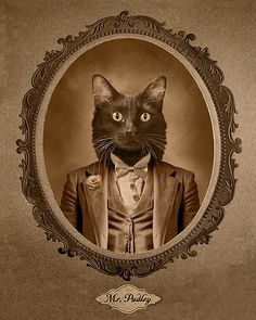 these animal portraits are, in a word, amazing! (cindy jerrell)