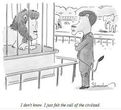 The New Yorker Cartoon contest keeps me busy never winning.